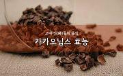 Cacao Nibs 효능입니다